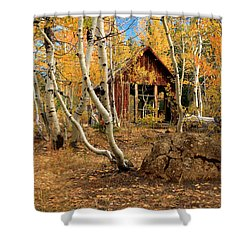 Old Cabin In The Aspens Shower Curtain by James Eddy