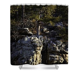 Shower Curtain featuring the photograph Old Cedar Buffalo National River by Michael Dougherty