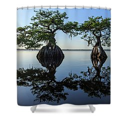 Old Couple Shower Curtain