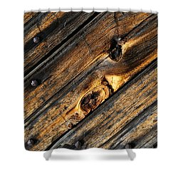 Old Door Wood 2 Shower Curtain