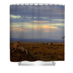 Old Earth Shower Curtain