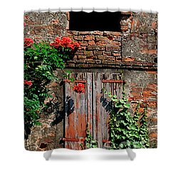 Shower Curtain featuring the photograph Old Farm Window by Frank Stallone