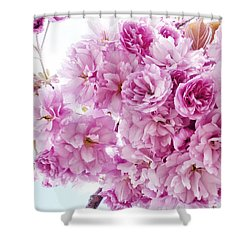 Shower Curtain featuring the photograph Old Fashioned Vintage Charm by Connie Handscomb