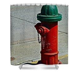 Old Fire Hydrant Shower Curtain