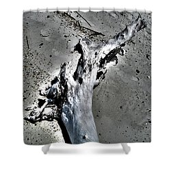 Old Footprints Of Time Shower Curtain