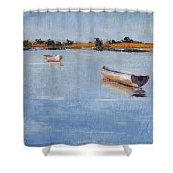 Old Friends Shower Curtain by Trina Teele