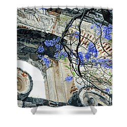 Old Growth Wisteria Shower Curtain