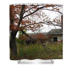 Old Homestead Shower Curtain by Michael Krek