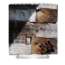Shower Curtain featuring the photograph Old Log House Detail by Joanne Coyle