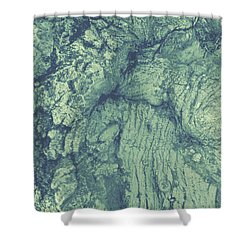 Old Man Tree Shower Curtain