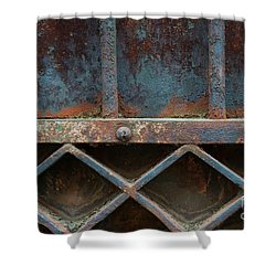 Shower Curtain featuring the photograph Old Metal Gate Detail by Elena Elisseeva