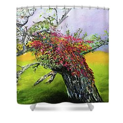 Old Nantucket Tree Shower Curtain