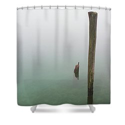 Old Piling Reflections 5 Shower Curtain