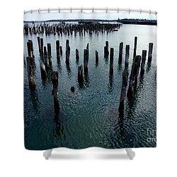 Old Pilings, Casco Bay Portland Trails Shower Curtain by Patricia E Sundik