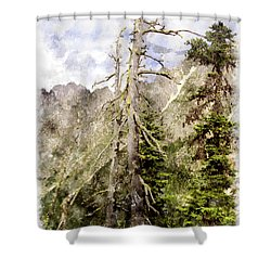 Old Pines Cascades Wc Shower Curtain by Peter J Sucy
