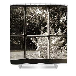 Shower Curtain featuring the photograph Old Pitted Glass Window 2 by Joanne Coyle