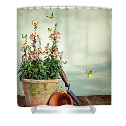 Old Plant Pot Shower Curtain