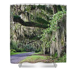 Old Plantation Road Shower Curtain