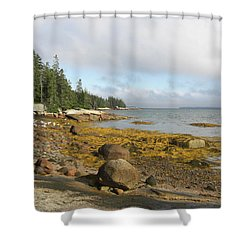 Old Quarry Beach, Stonington, Me Shower Curtain