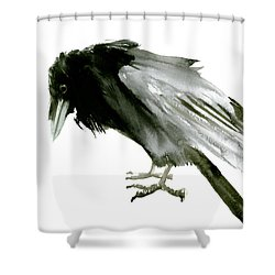 Old Raven Shower Curtain by Suren Nersisyan