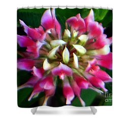 Old Rose Explosive Wildflower Shower Curtain