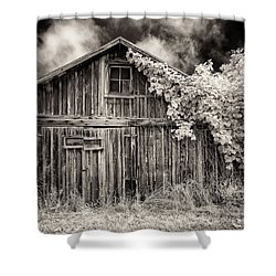 Shower Curtain featuring the photograph Old Shed In Sepia by Greg Nyquist