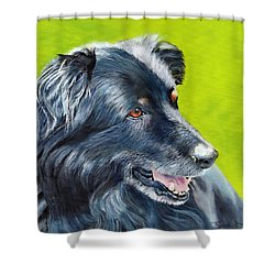 Old Shep Shower Curtain