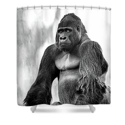 Old Soul Shower Curtain by Kandy Hurley
