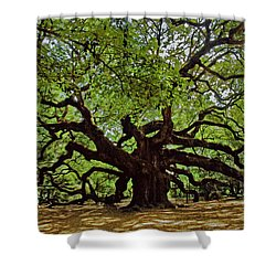 Old South Shower Curtain