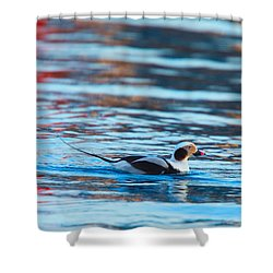 Old Squaw At Dawn Shower Curtain