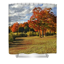 Old Stone Church Autumn Glow Shower Curtain
