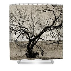 Old Texas Frontier  Shower Curtain