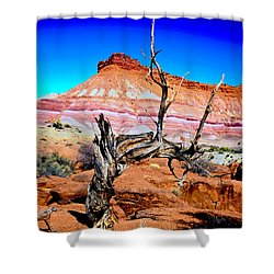 Old-timer Shower Curtain