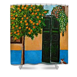 Old Times Neighborhood Shower Curtain
