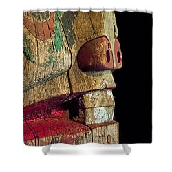 Old Totum Shower Curtain