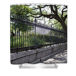 Old Tree And Ornate Fence Shower Curtain