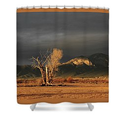 Sunset On The Old Cottonwood Shower Curtain