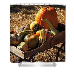 Old Wagon Full Of Autumn Fruit Shower Curtain by Garry Gay