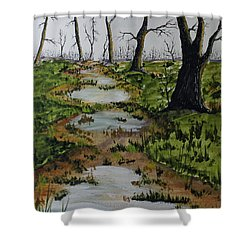 Old Walking Trail Shower Curtain by Jack G  Brauer