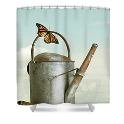 Old Watering Can With A Butterfly Shower Curtain