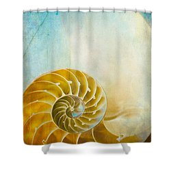 Old World Treasures - Nautilus Shower Curtain by Colleen Kammerer