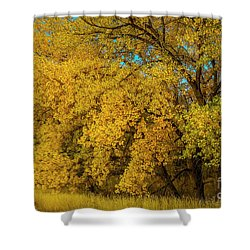 Old Yellar Shower Curtain