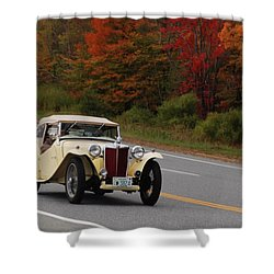 Shower Curtain featuring the photograph Old Yeller 8168 by Guy Whiteley