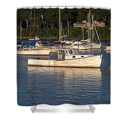 Shower Curtain featuring the photograph Ole Boy by  Newwwman