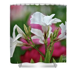 Oleander Casablanca 1 Shower Curtain by Wilhelm Hufnagl