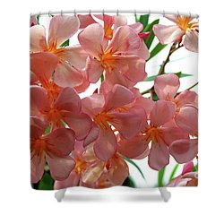 Shower Curtain featuring the photograph Oleander Dr. Ragioneri 4 by Wilhelm Hufnagl