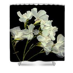 Oleander Shower Curtain by Kurt Van Wagner