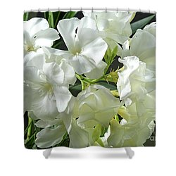 Oleander Mont Blanc 2 Shower Curtain by Wilhelm Hufnagl