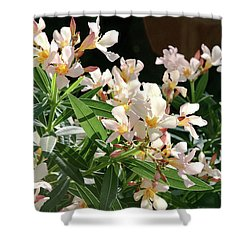 Oleander Petite Salmon 3 Shower Curtain