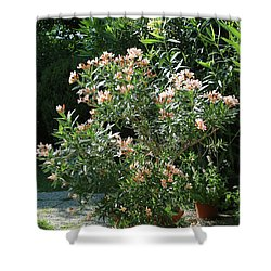 Oleander Petite Salmon 4 Shower Curtain